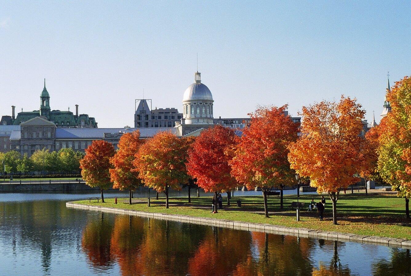 Montréal - khi mùa thu gõ cửa