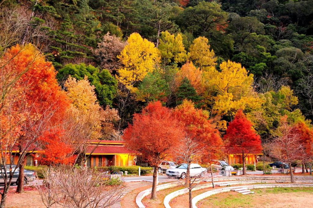 Mê mẫn mùa thu xứ Đài
