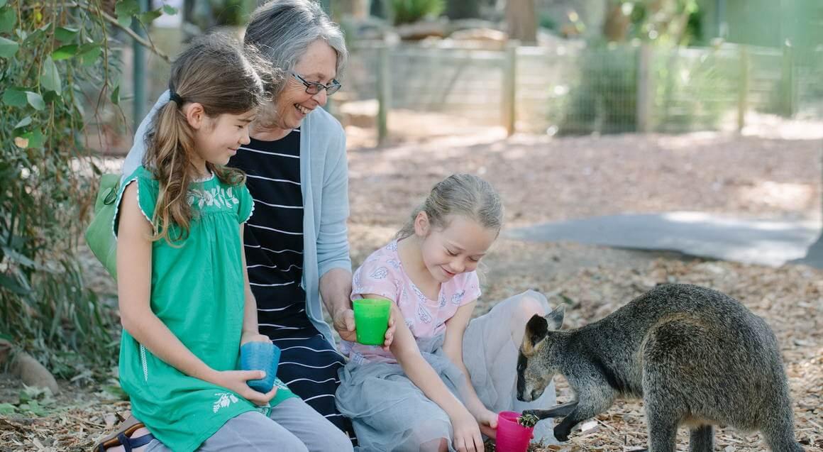 4. Vui chơi tại vườn thú hoang dã Featherdale Park