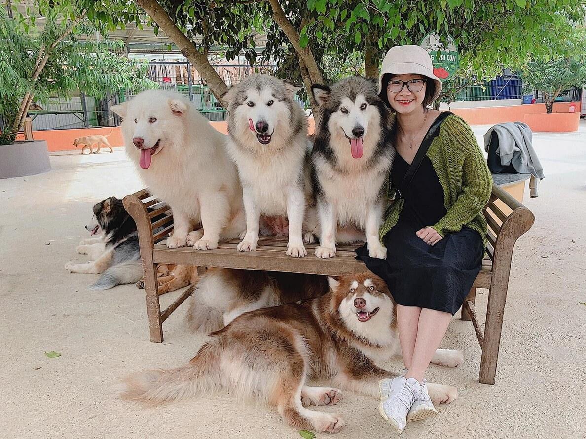4. Puppy Farm