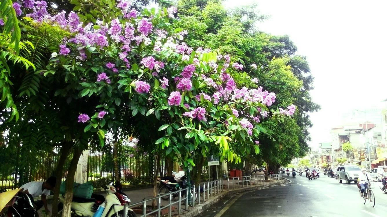 Hà Nội - Khúc giao mùa