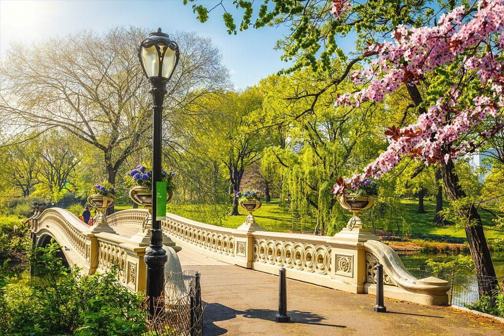 Central Park (Công viên trung tâm)