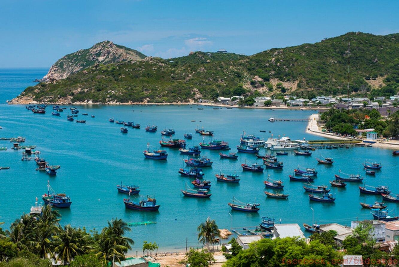 Vịnh Vĩnh Hy - Hang Rái - Trải nghiệm hái nho Ninh Thuận