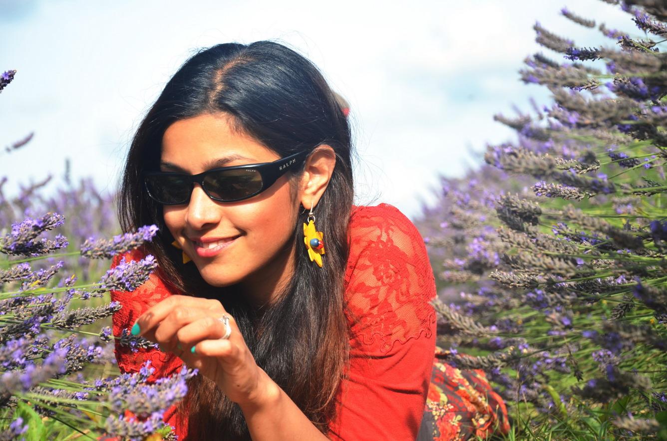 Những địa điểm khác để chiêm ngưỡng vẻ đẹp hoa oải hương