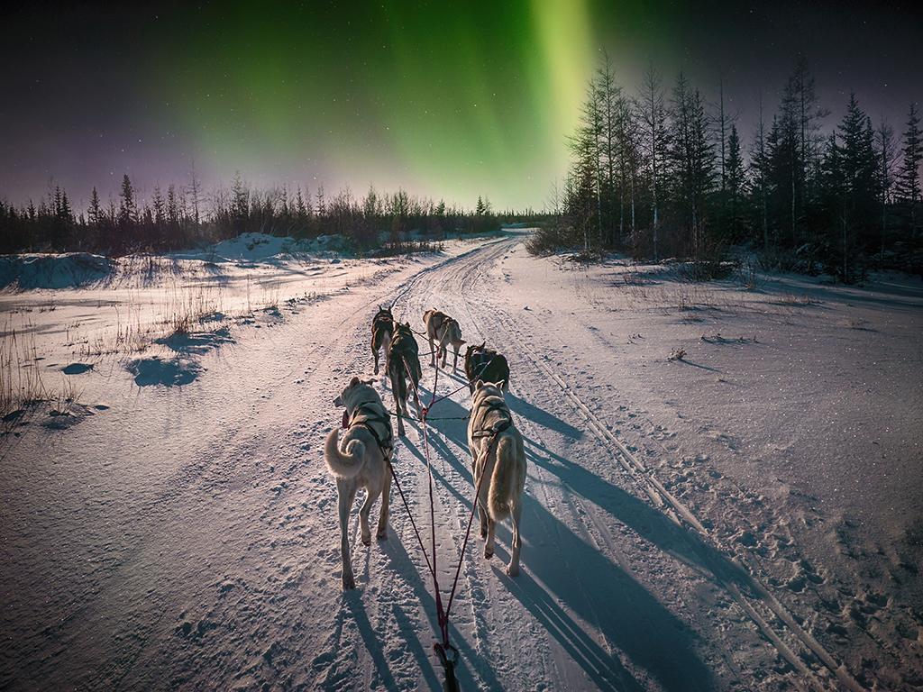 Vẻ đẹp đầy mê hoặc ở Yellowknife