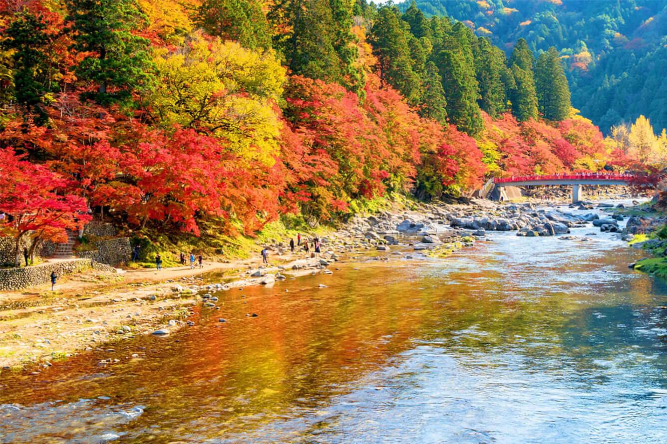 1. Thung lũng Korankei (Nhật Bản)