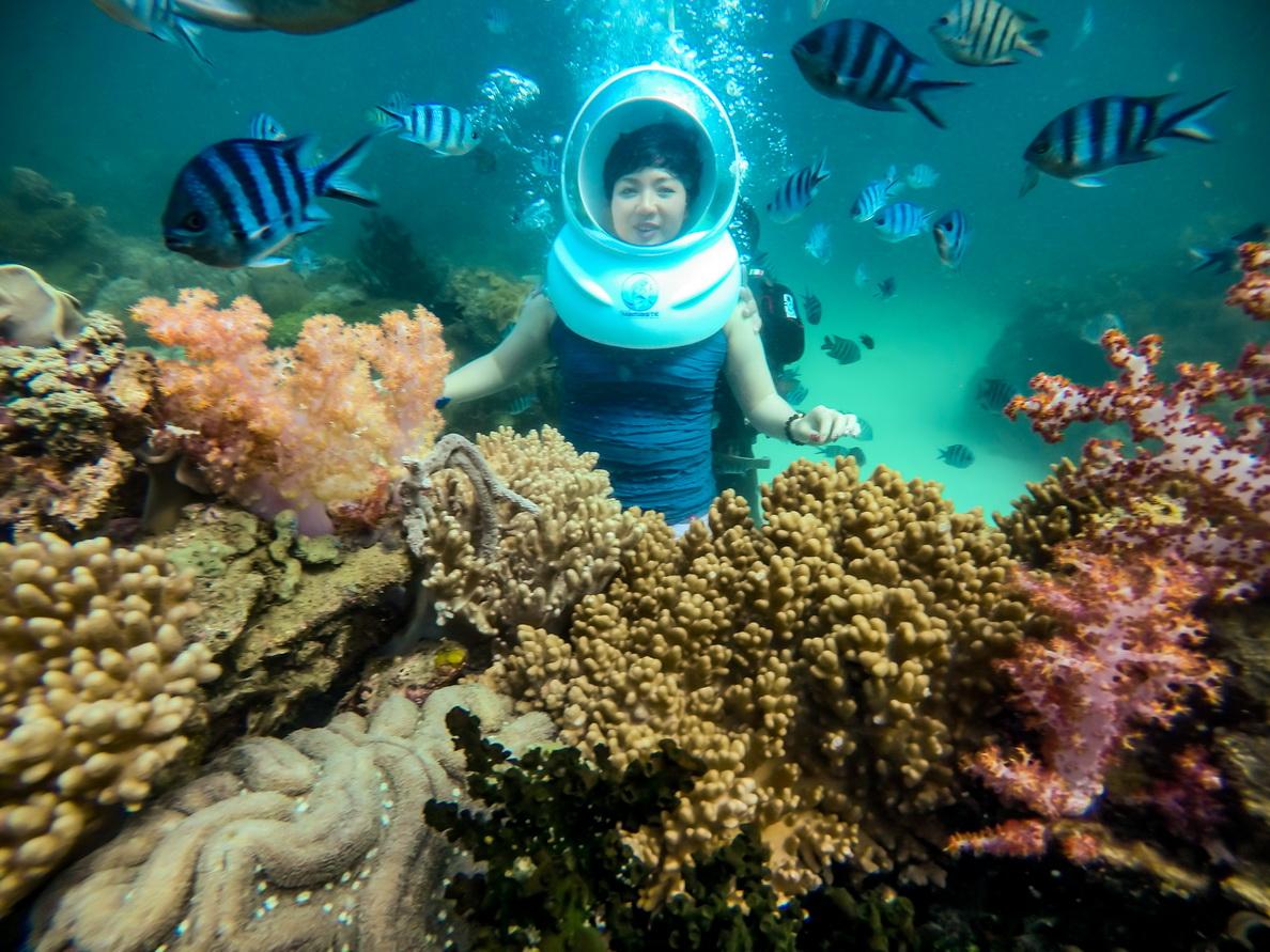 Thế giới đại dương huyền bí đầy sắc màu