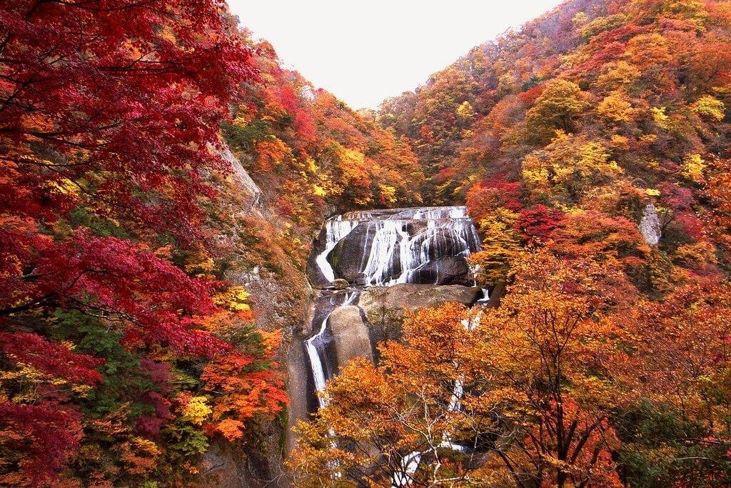 Thác Fukuroda, một trong ba thác nước nổi danh ở Nhật Bản