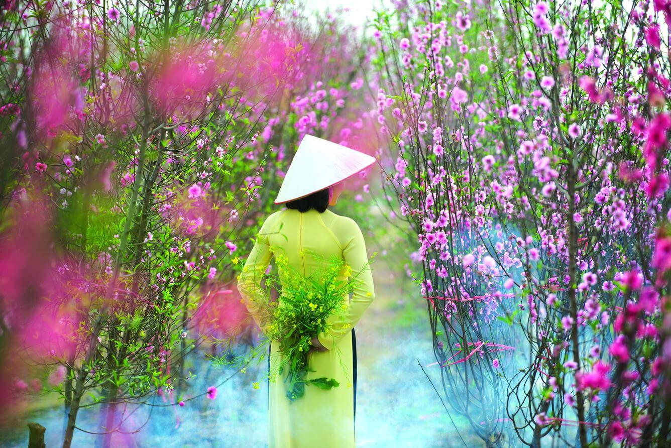 Vườn hoa bãi đá sông Hồng, bốn mùa ngát hương xuân