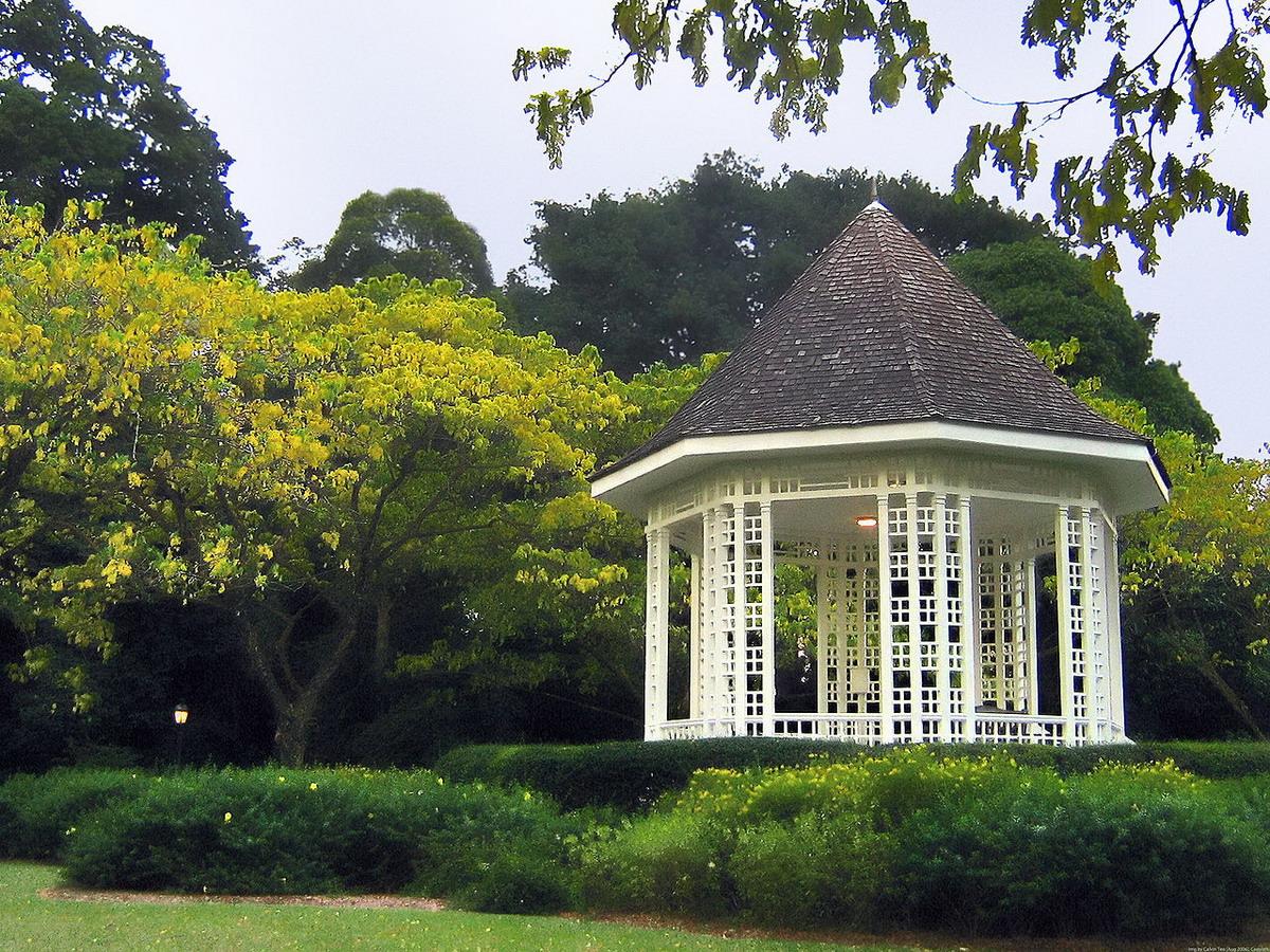 1.    Thư giãn trong vườn bách thảo
