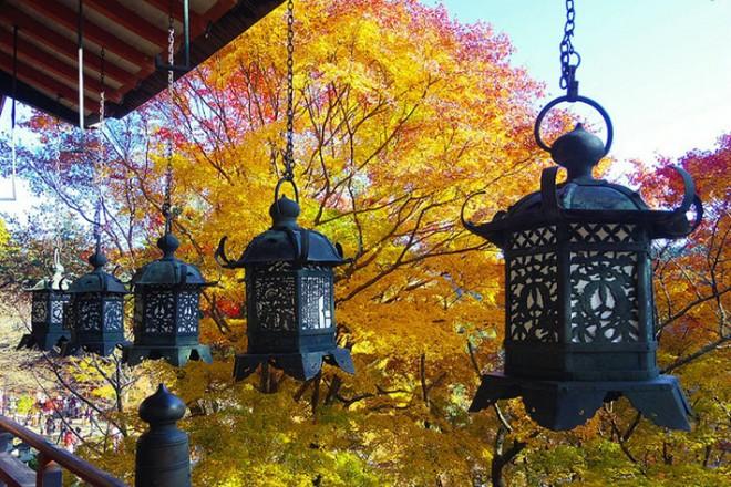 Nara, Nhật Bản