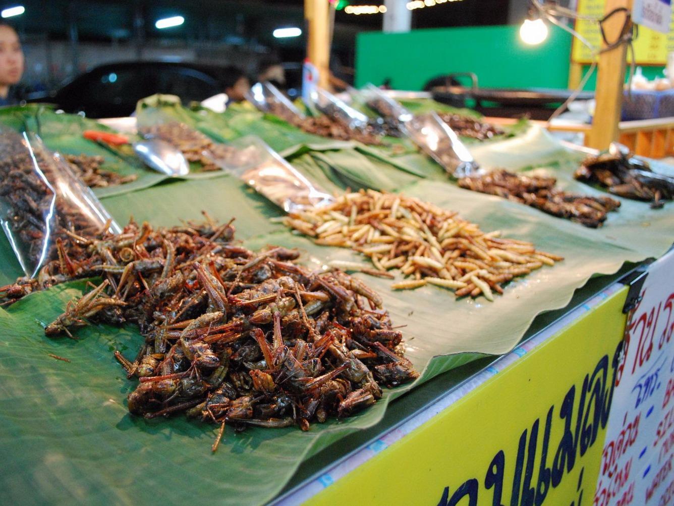 """Ký sự Thái Lan - Phần 2: Đến """"Thành phố ma quỷ"""" ăn côn trùng"""