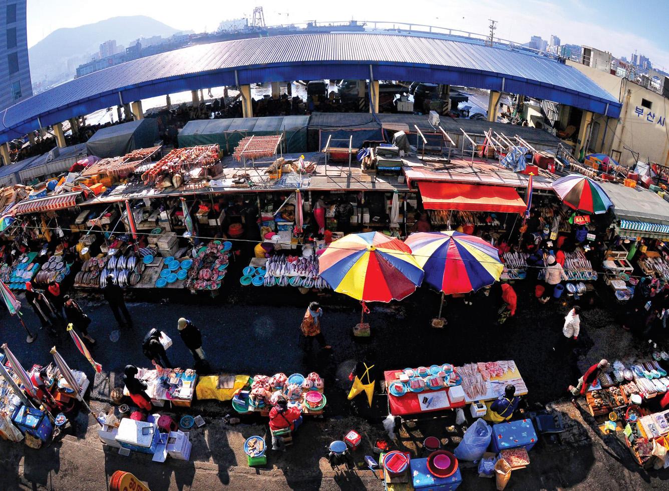 Độc đáo chợ hải sản Busan, Hàn Quốc