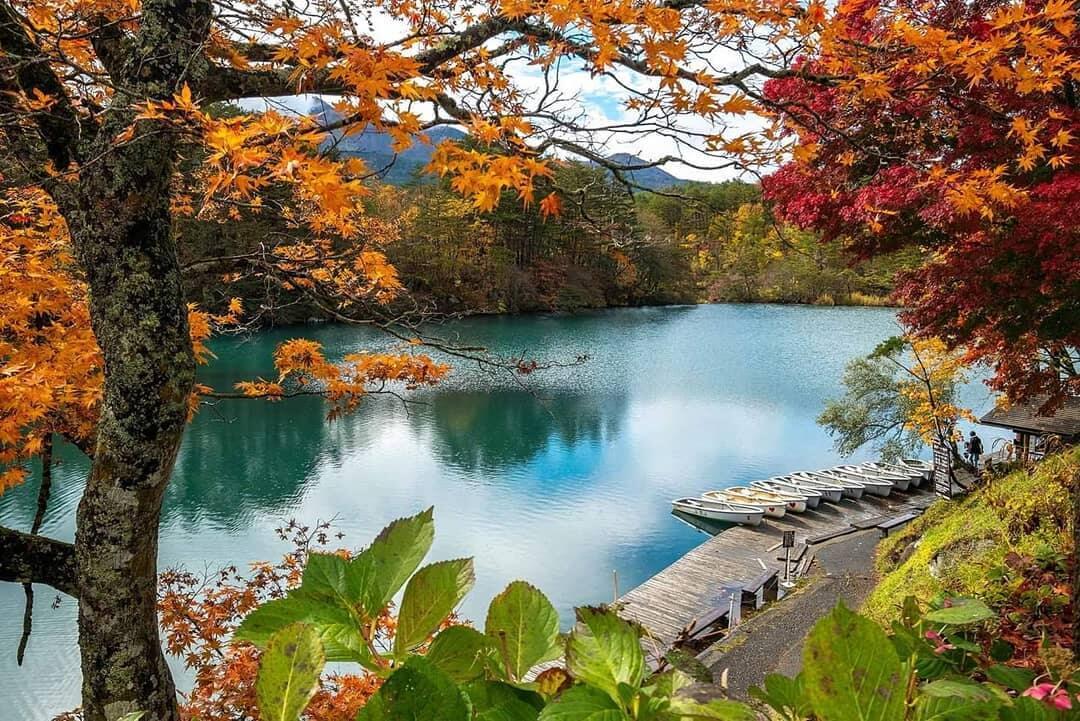 3. Ngắm lá mùa thu ở Urabandai và Goshikinuma  (Tỉnh Fukushima)