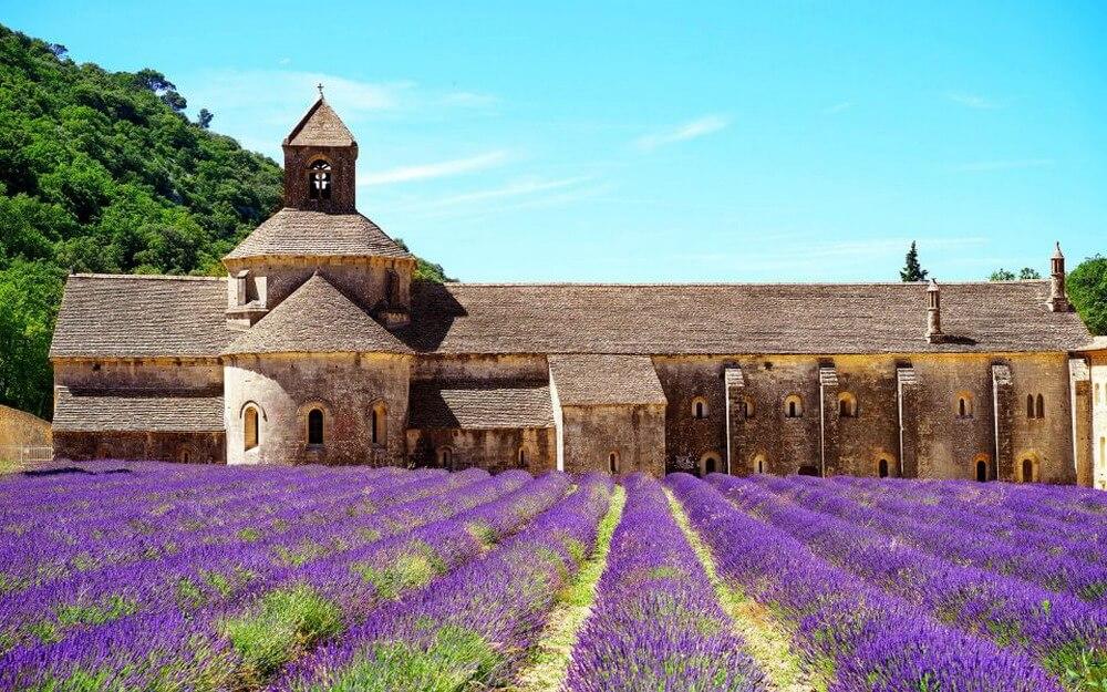Sắc tím lavender vùng Provence