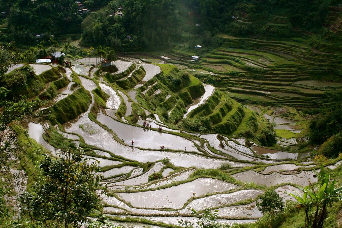 Mê đắm Hà Giang mùa nước đổ