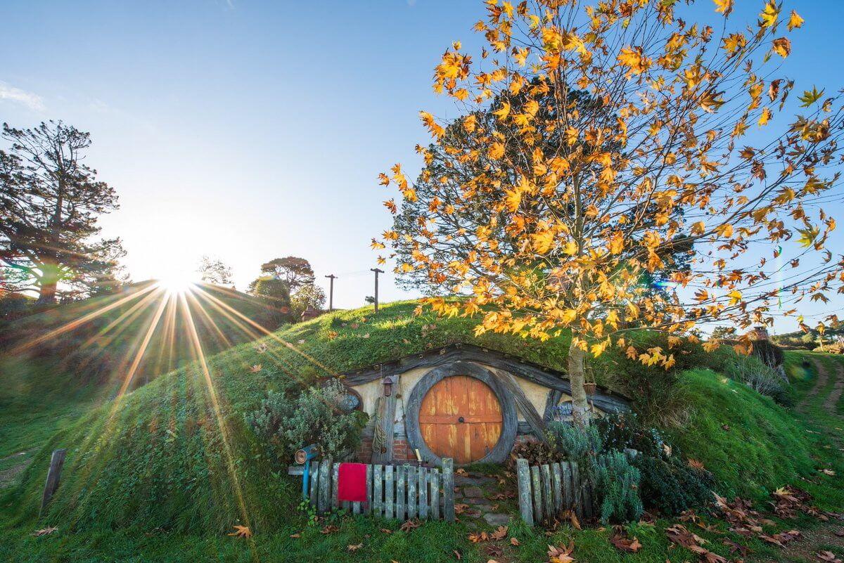 Đắm say mùa thu New Zealand