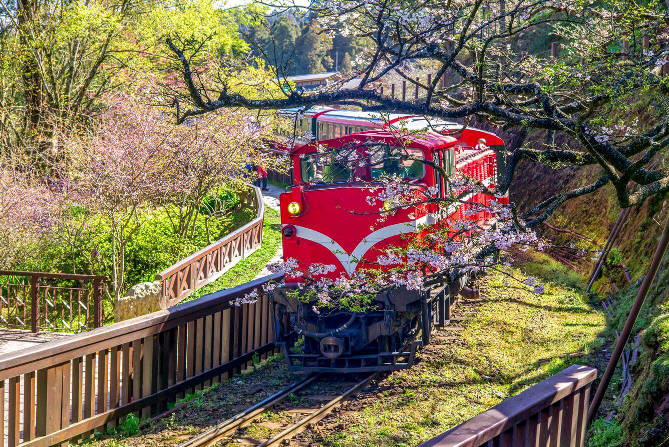7. Núi A Lý, công viên Dương Minh Sơn (Đài Loan)
