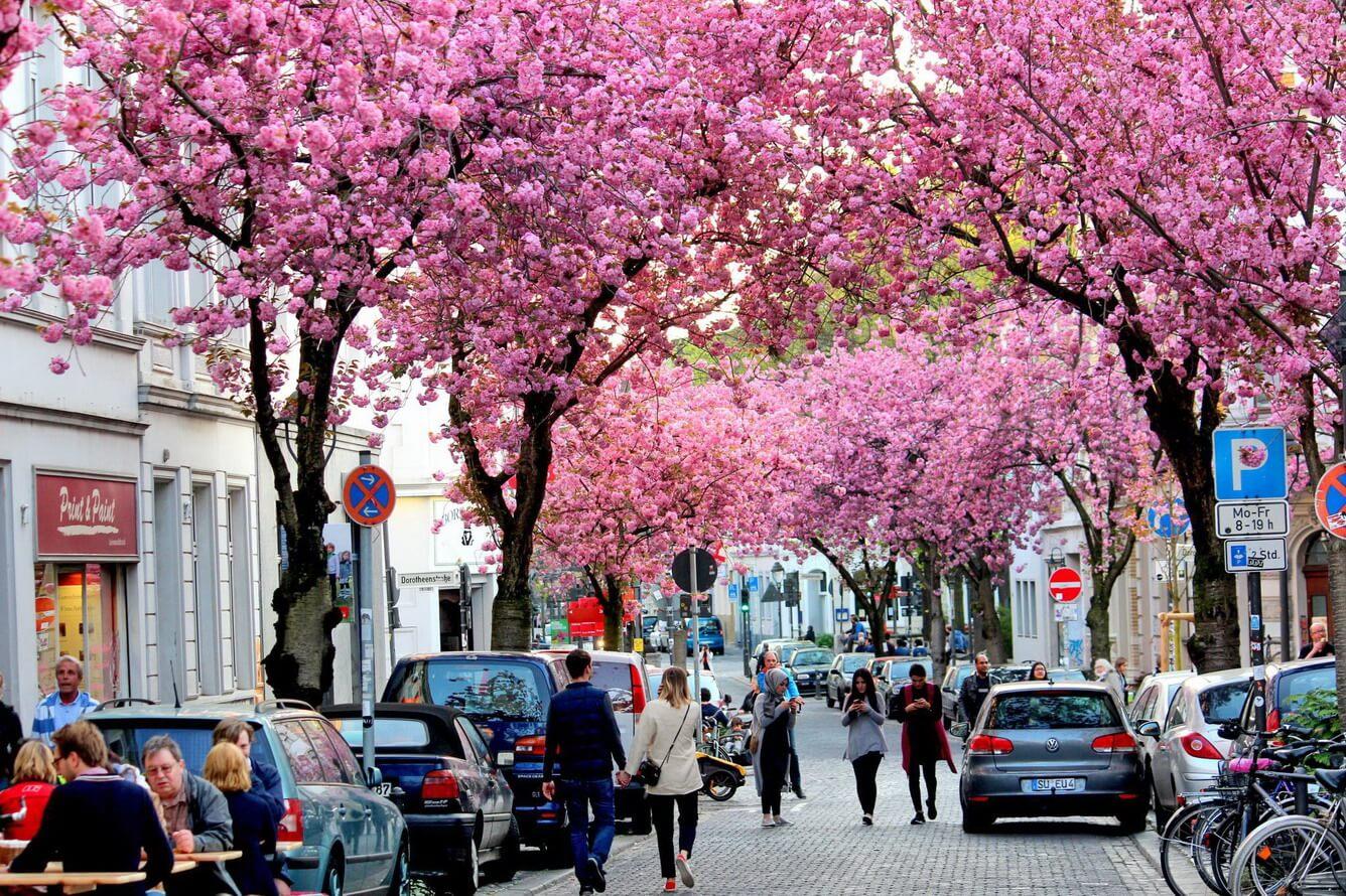 7. Con đường Heerstrasse (Đức)