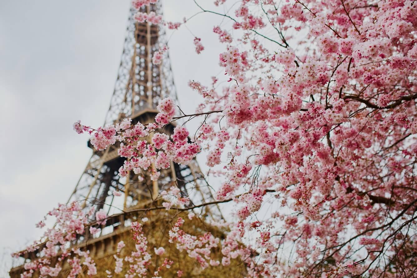 8. Paris (Pháp)