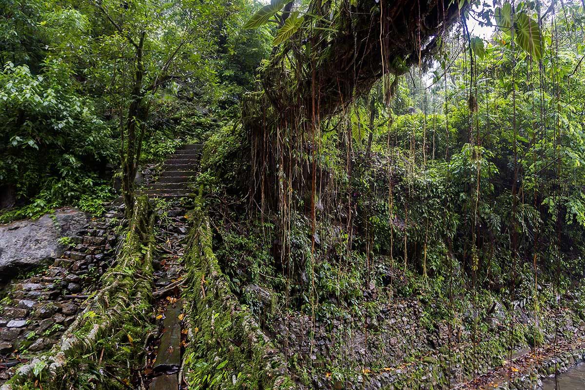 Cherrapunjee, Meghalaya State