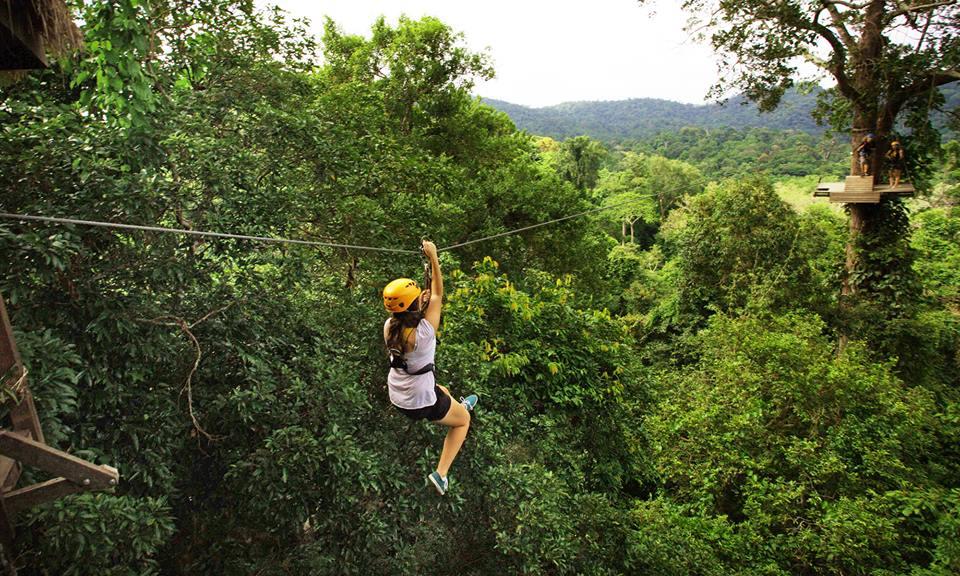 4. Enjoy the Flight of the Gibbon: An exhilarating canopy tour
