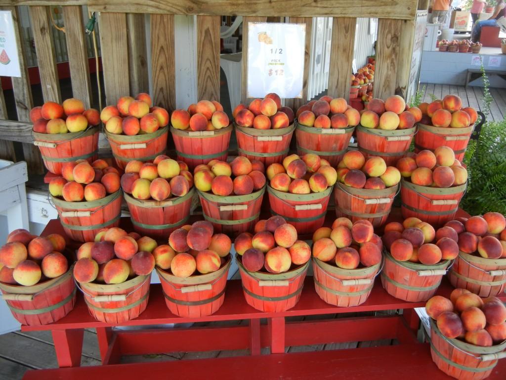 Georgia Peach Festival: Peach County, Georgia