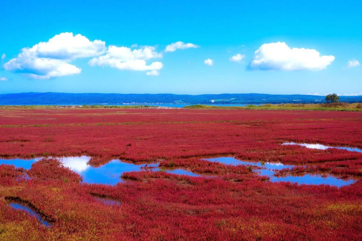 Lake Notoro (Hokkaido)
