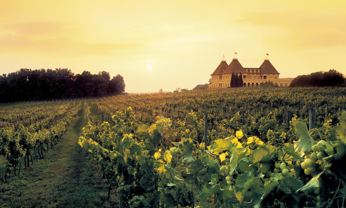 Khám phá hầm rượu vang Chenonceau tuyệt hảo