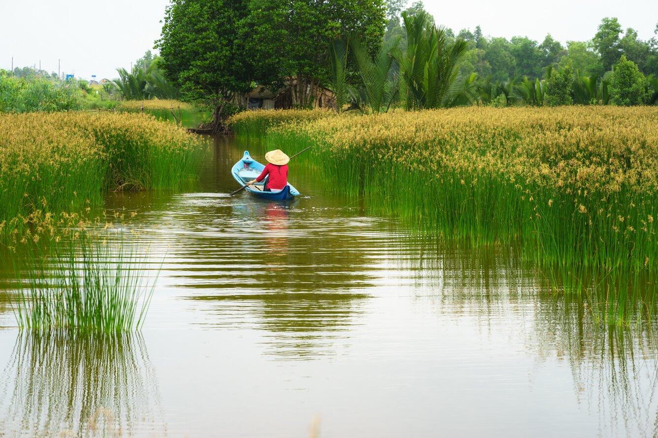 Vietravel ưu đãi tới 39% giá tour tại Ngày Hội  Kích Cầu Du Lịch TP. Hồ Chí Minh và 13 tỉnh thành ĐBSCL