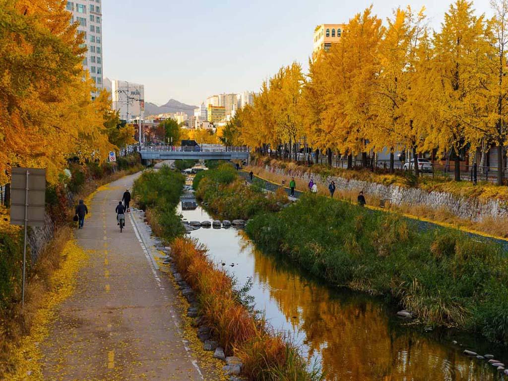 6) Seoul, South Korea