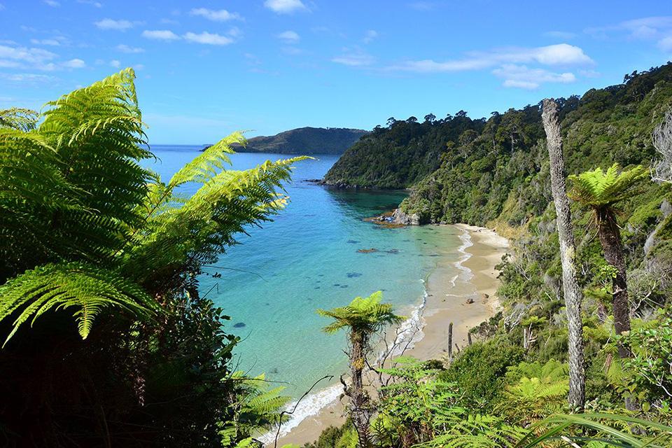 10. Stewart Island