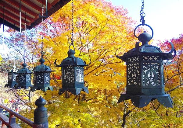 1. Nara, Nhật Bản