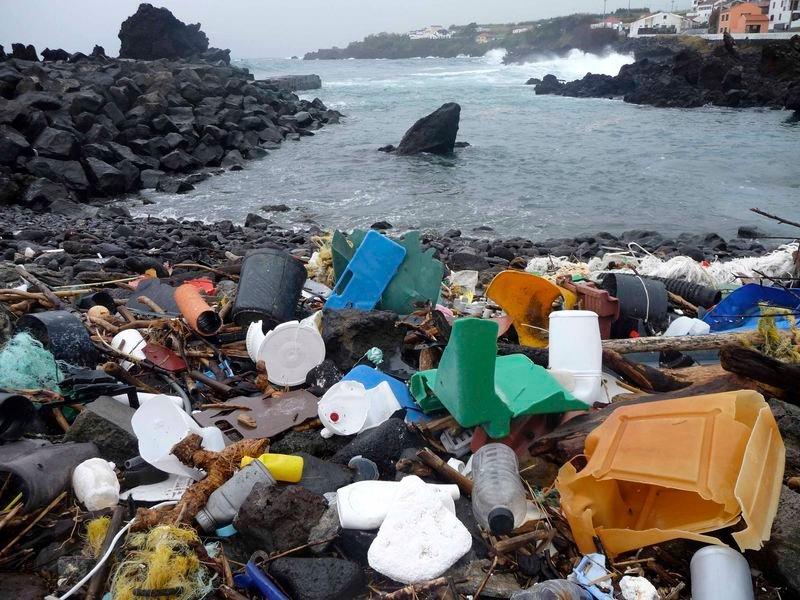 3. Don't litter