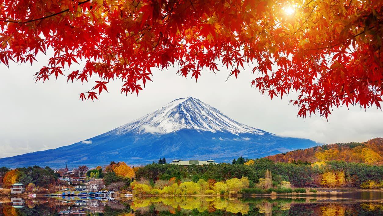 Chất ngất cảnh thu tại hồ Kawaguchi
