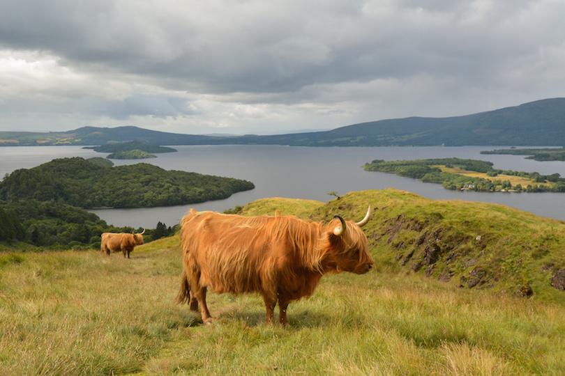 6. Loch Lomond and the Trossachs