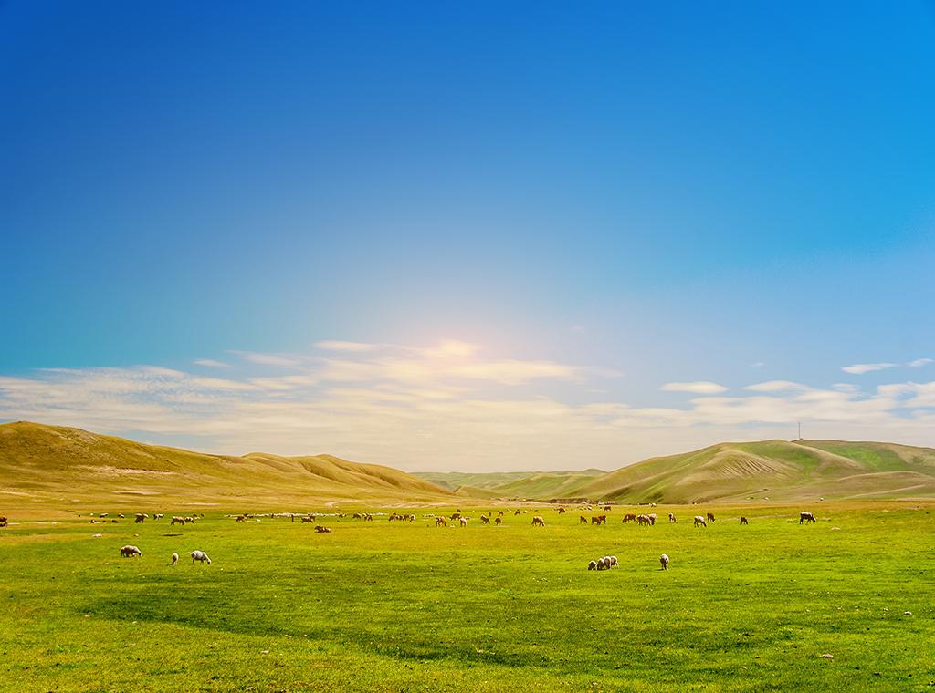 Đến Nội Mông trải nghiệm làm dân du mục
