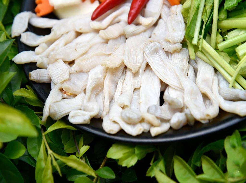 Sá sùng (Quảng Ninh, Khánh Hòa, Côn Đảo)