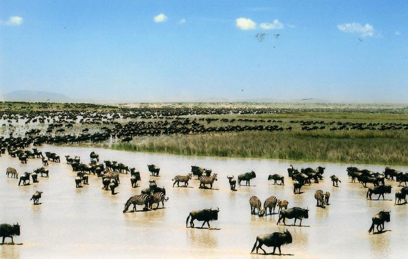 3. Serengeti National Park