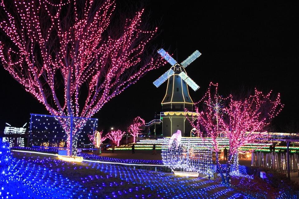 Những ánh đèn thắp sáng tô điểm cho màn đêm ở Ibaraki