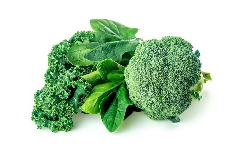 Các loại thực phẩm giúp nâng cao sức đề kháng, bảo vệ sức khỏe hiệu quả