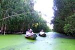 Du lịch mùa nước nổi: Thế mạnh đặc trưng của An Giang