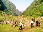Đèo Tam Điệp : Một di tích, danh thắng nổi tiếng của Ninh Bình