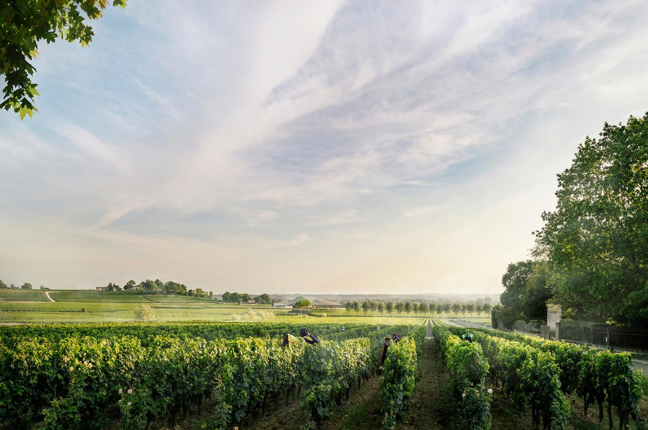 Những địa điểm bạn nhất định phải ghé khi đến Bordeaux
