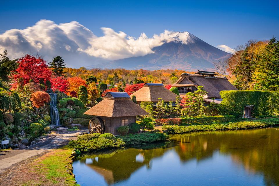 Hành trình tuyệt đẹp thưởng ngoạn trọn mùa thu Nhật Bản