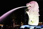"Singapore ""tiếp thị"" du lịch Mice tại Việt Nam"