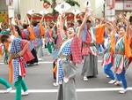 Yosakoi - Vũ điệu mùa hè sôi động