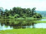 Thiên nhiên hoang dã của vườn Cát Tiên