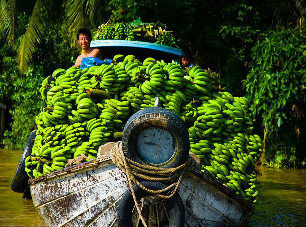 Cù lao Tân Phong: Tiếng gọi miệt vườn