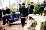 Lên Nàn Ma (Hà Giang), xem lễ cúng thần rừng